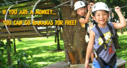 Monkeys go for FREE this Chinese New Year