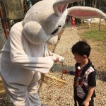 Look who decided to hop around sharing chocolate eggs! #Easter…
