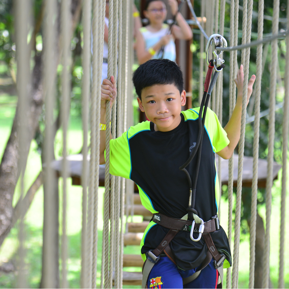 Forest Adventure Junior Course
